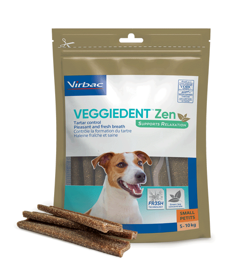 VeggieDent FR3SH Zen - Gebitsverzorging