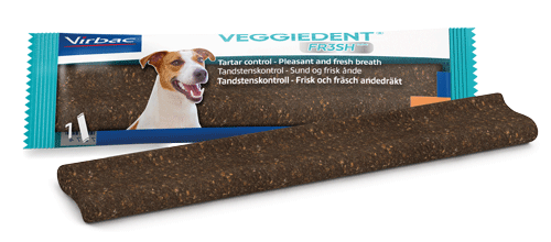 VeggieDent FR3SH Single - verpakking